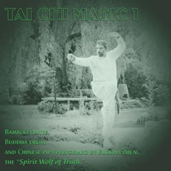 Tai Chi music by a Zen master.